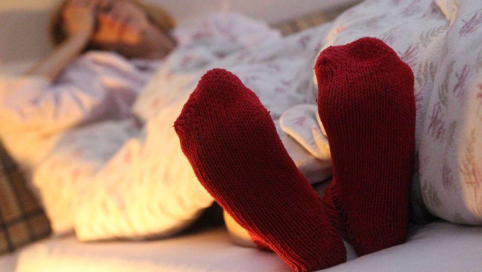 Socken: Mücken und Spinnen schätzen Schweißgeruch