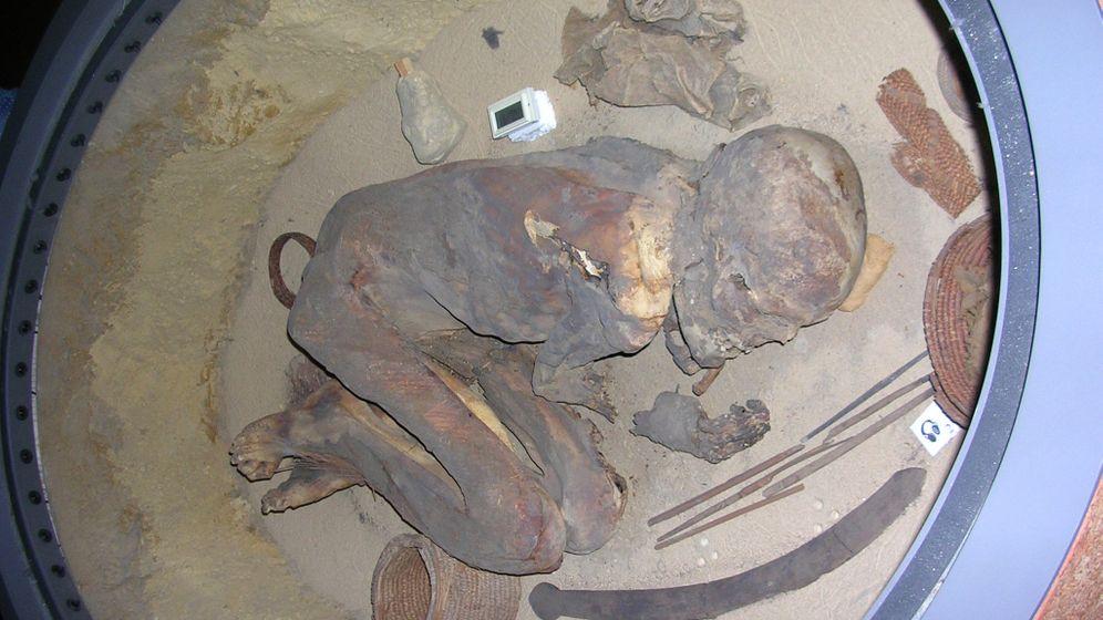Konservierung von Mumien: Öl, Harz und Natron
