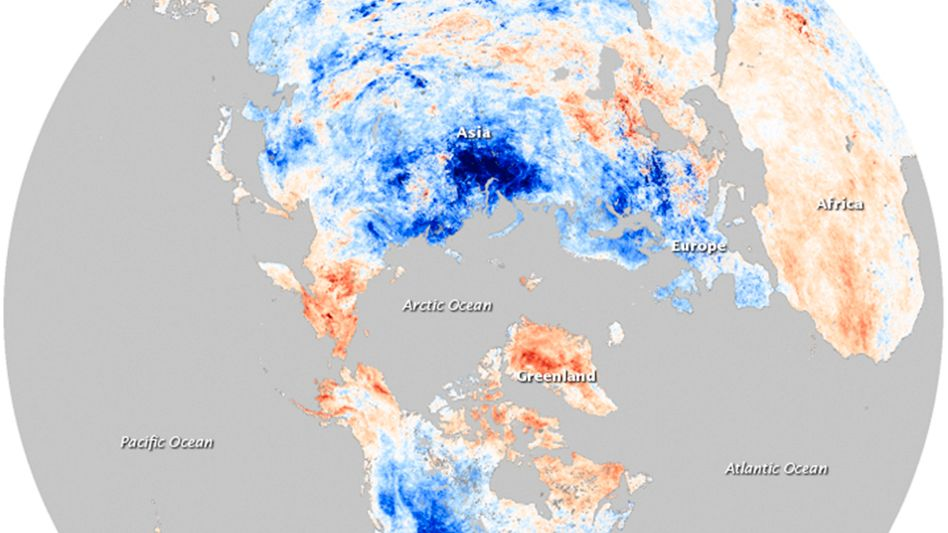Temperaturanomalien (im Januar 2010): Warme Arktis, kaltes Europa und Nordamerika