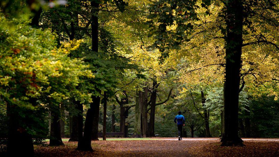 """Joggen im Herbst: """"Wenn es in den Sehnen und Knochen wehtut, sollte man die Intensität und den Umfang reduzieren."""""""