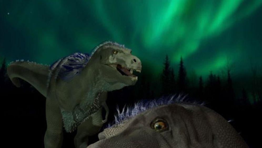 Arktischer Raubsaurier: Forscher finden Mini-T-Rex in der Arktis