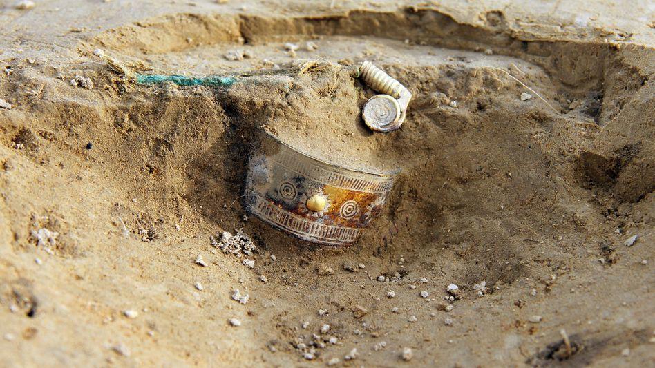 Schatz im Boden: Goldschmuck im Landkreis Diepholz entdeckt