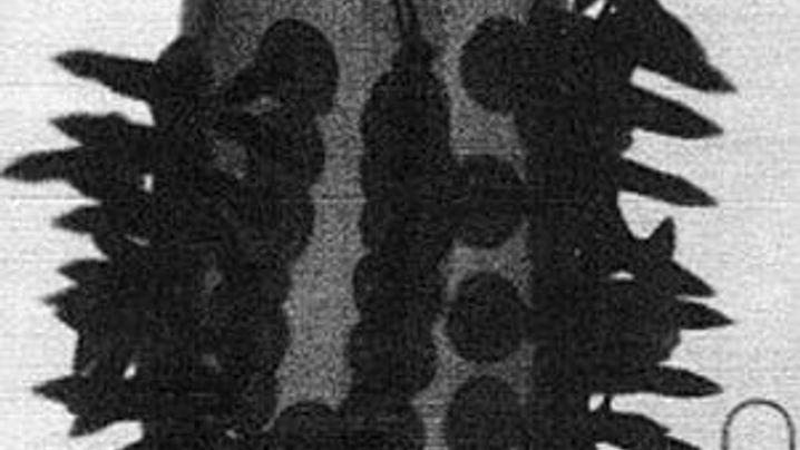 7/7/2005: Splitterbomben und Sprengstoffpäckchen