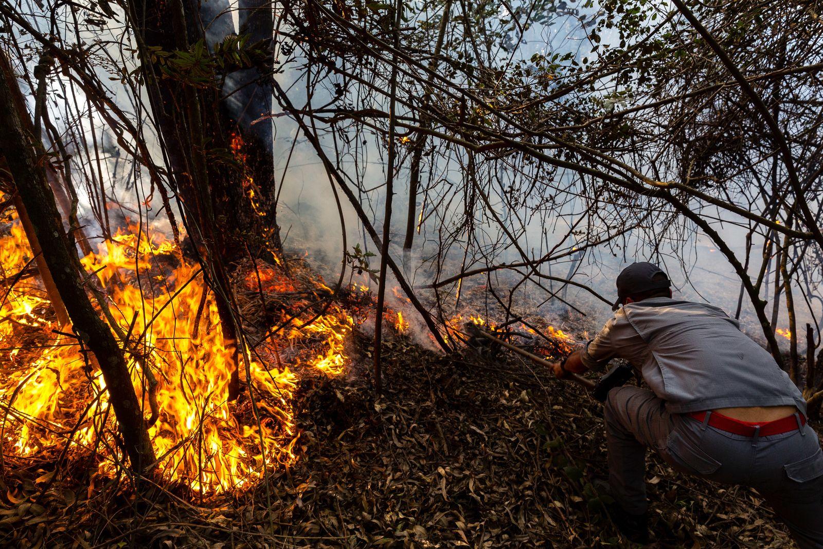 Waldbrand in einem indigenen Gebiet in Brasilien