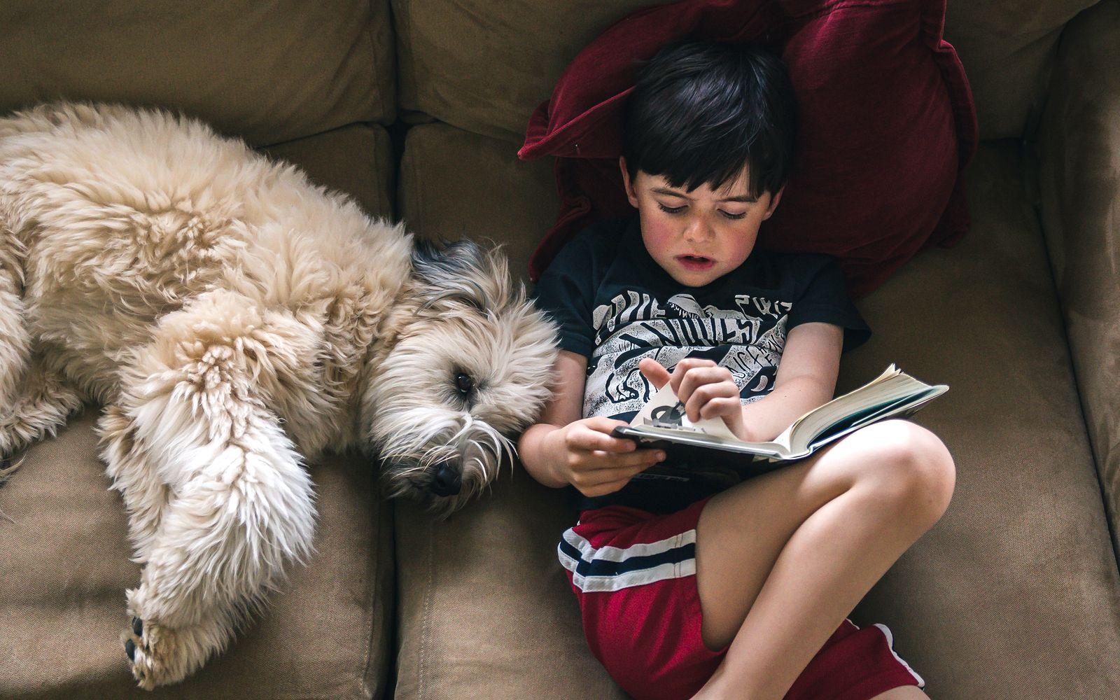EINMALIGE VERWENDUNG Lesen mit Hund