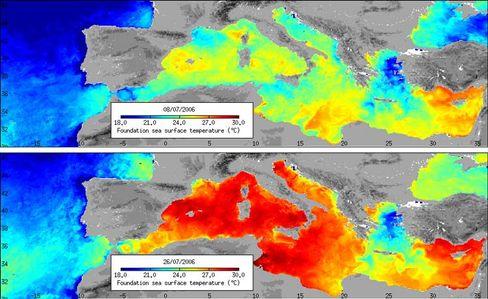 Von Gelb-Grün zu Rot: Temperaturen an der Oberfläche des Mittelmeers am 8. und 26. Juli 2006