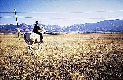 Kurdischer Reiter: Manche Verkehrsmittel sind noch flotter als die beiden Radler - 1 PS in der Osttürkei gegen 4 stählerne Waden.