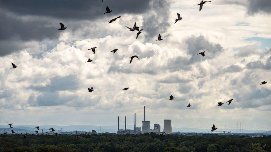 Das hessische Kohlekraftwerk Staudinger nahe Hanau. Betreiber Uniper will es 2025 vom Netz nehmen.