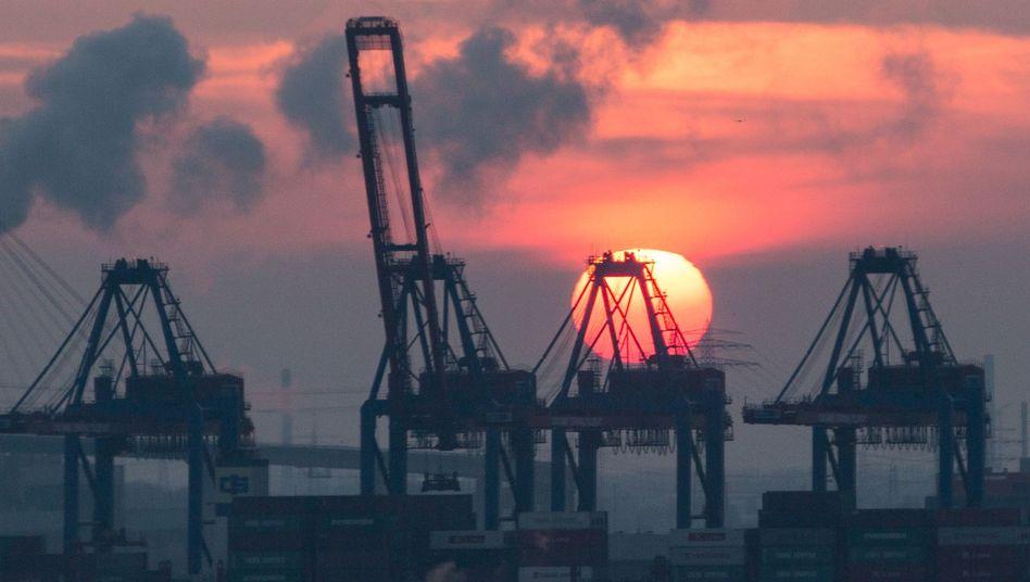 Containerterminal in Hamburg