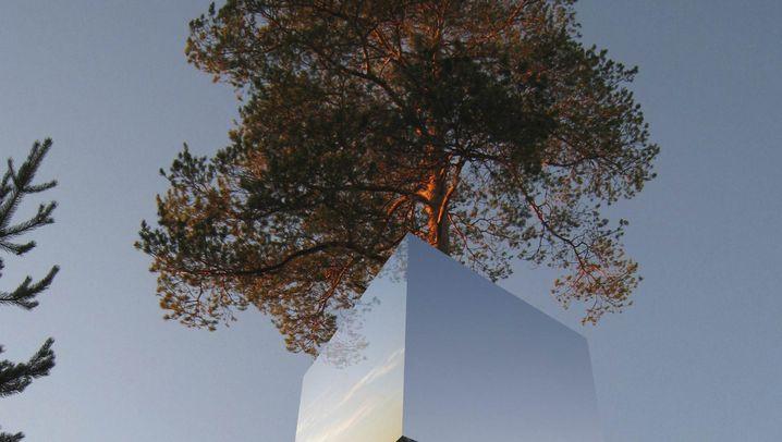 Treehotel in Schweden: Träumen in Bäumen