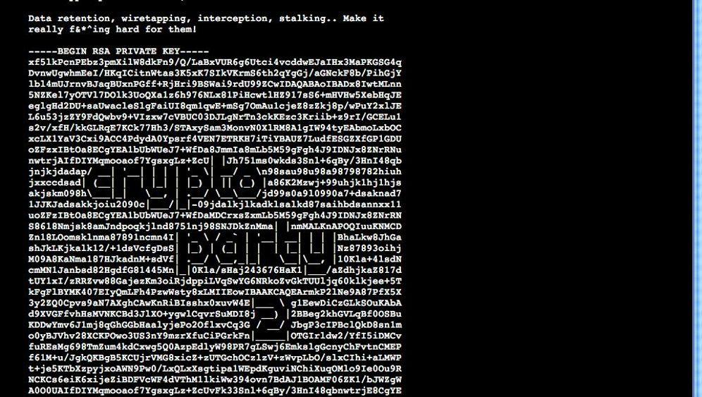Daten-Verschlüsselung: Selbsthilfe auf der Cryptoparty