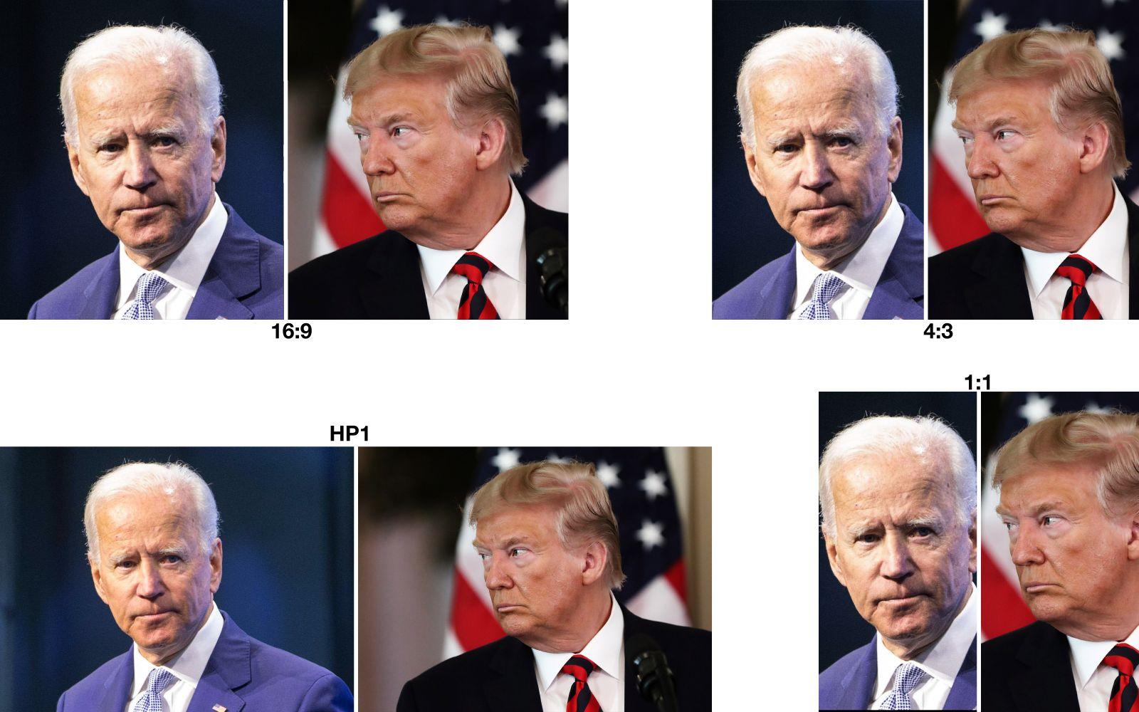 EINMALIGE VERWENDUNG COMBO/ Trump/ Biden