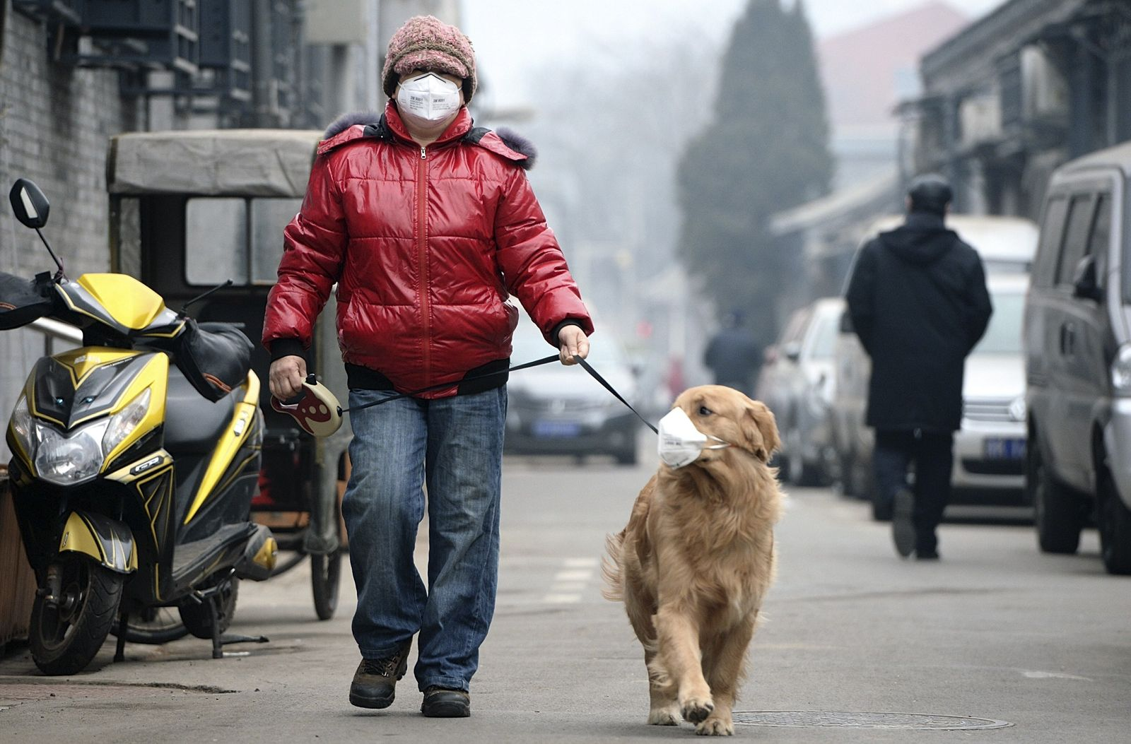 China/ Smog