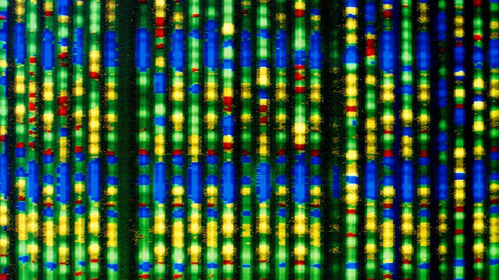 Genom-Forschung: Zoo mit 10.000 Arten