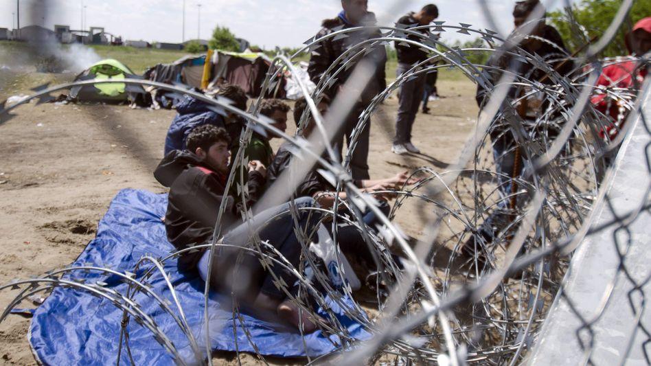Flüchtlinge vor einer ungarischen Transitzone