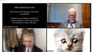 Anwalt beteuert: »Ich bin keine Katze«