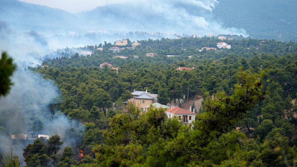 In Ippokratios Politia, einem Dorf nördlich von Athen, haben die Flammen bereits ein Wohngebiet erreicht