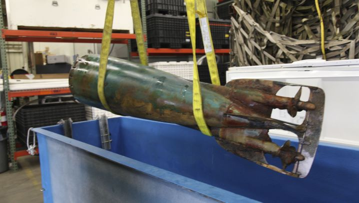 Archäologie-Assistenten: Delfine finden antiken Torpedo