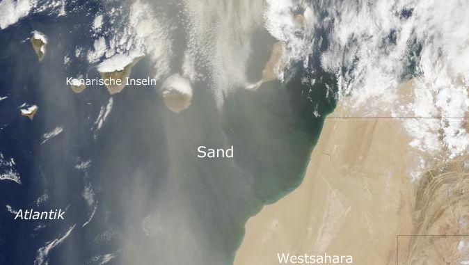 Sandwind aus Südosten: Dünger auf trockenem Kanaren-Boden