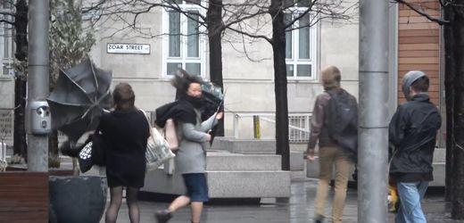 """London: Sturm """"Dennis"""" zerstört reihenweise Regenschirme"""