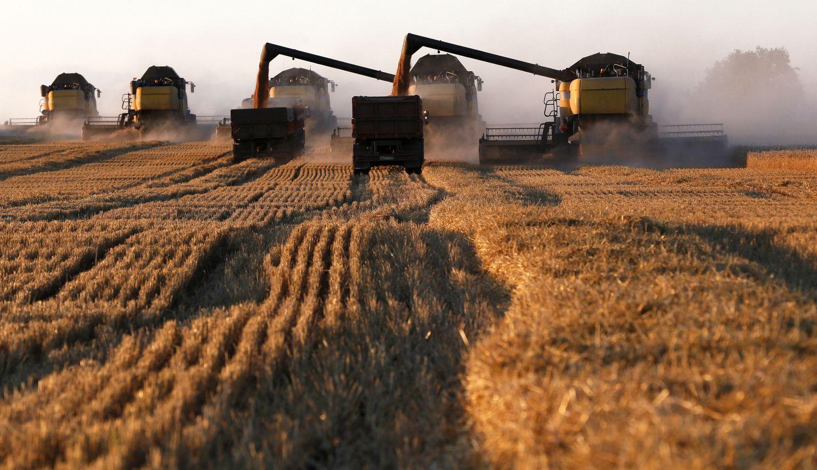 Russland Landwirtschaft