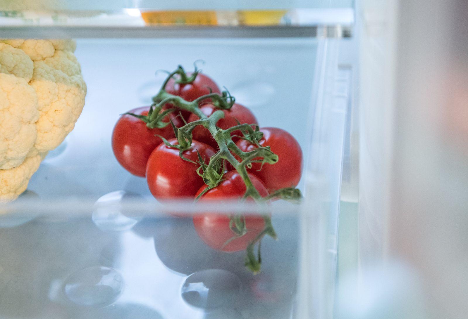 EINMALIGE VERWENDUNG Tomaten/ Kühlschrank