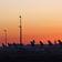 Corona bringt Rekordrückgang der CO₂-Emissionen