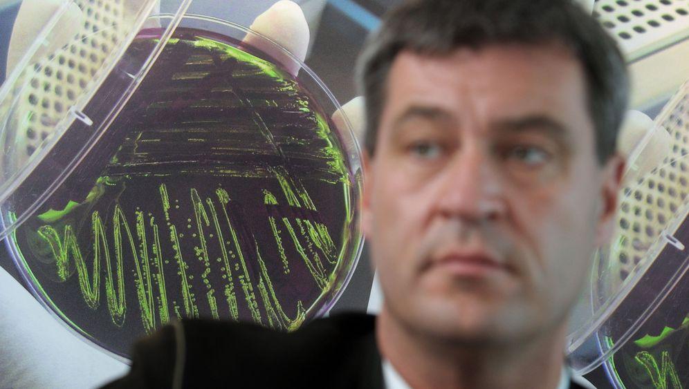 Bakterien: Winzige Mitbewohner im Darm