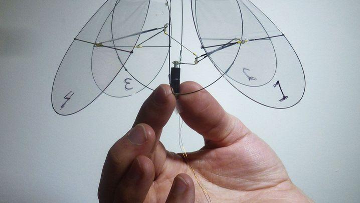 Flugtechnik: Der Quallenkopter