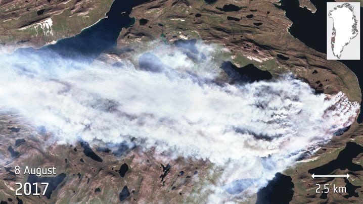 Buschfeuer am 8. August im Westen Grönlands