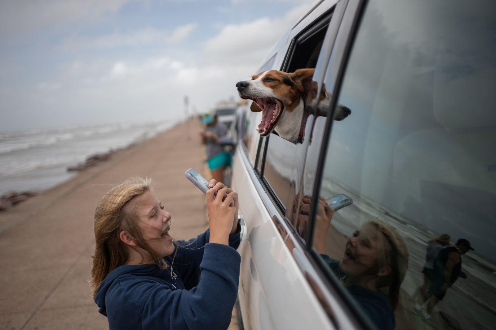Girl photographs her dog ahead of Hurricane Laura in Galveston, Texas