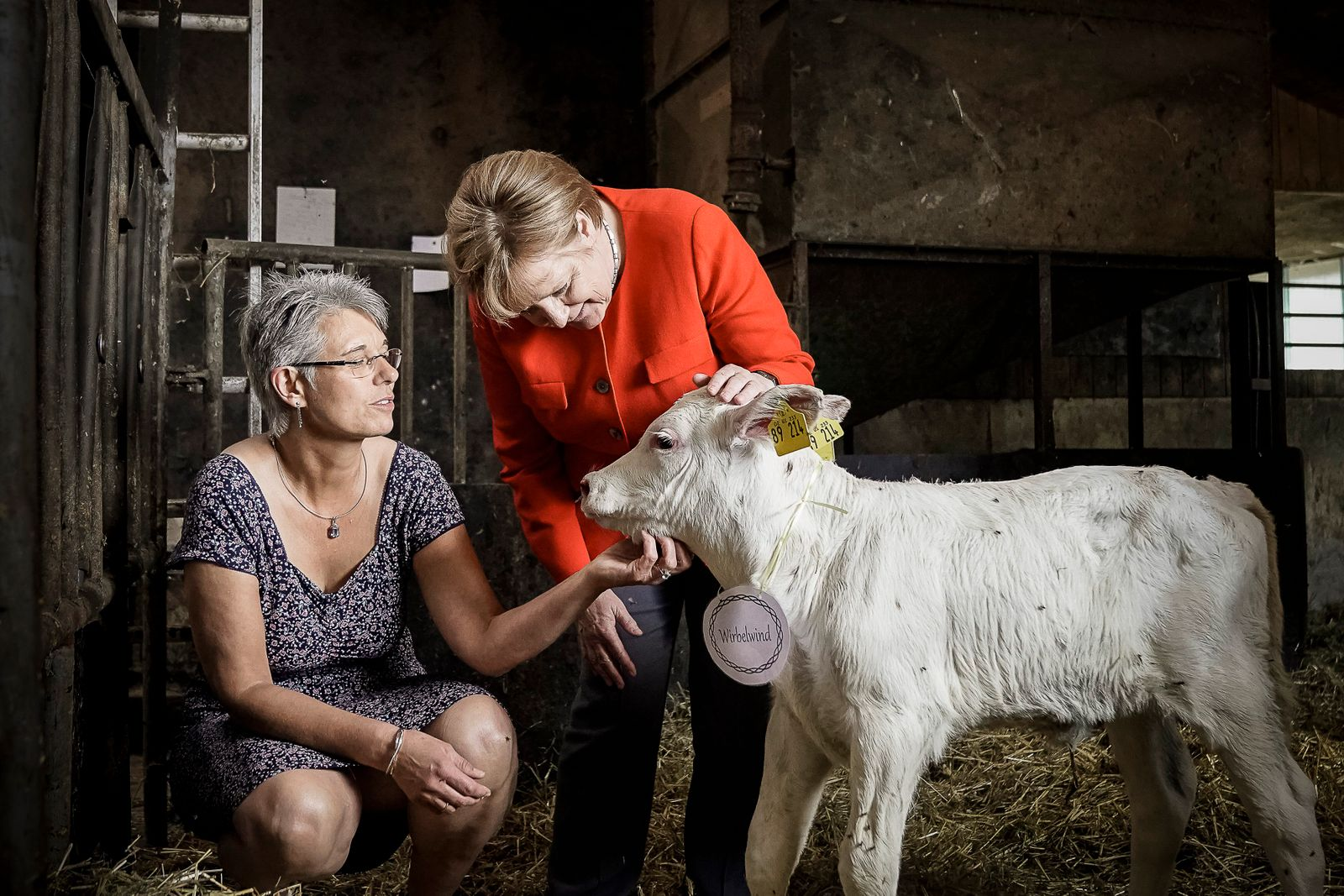 Angela Merkel Visits A Dairy Farm