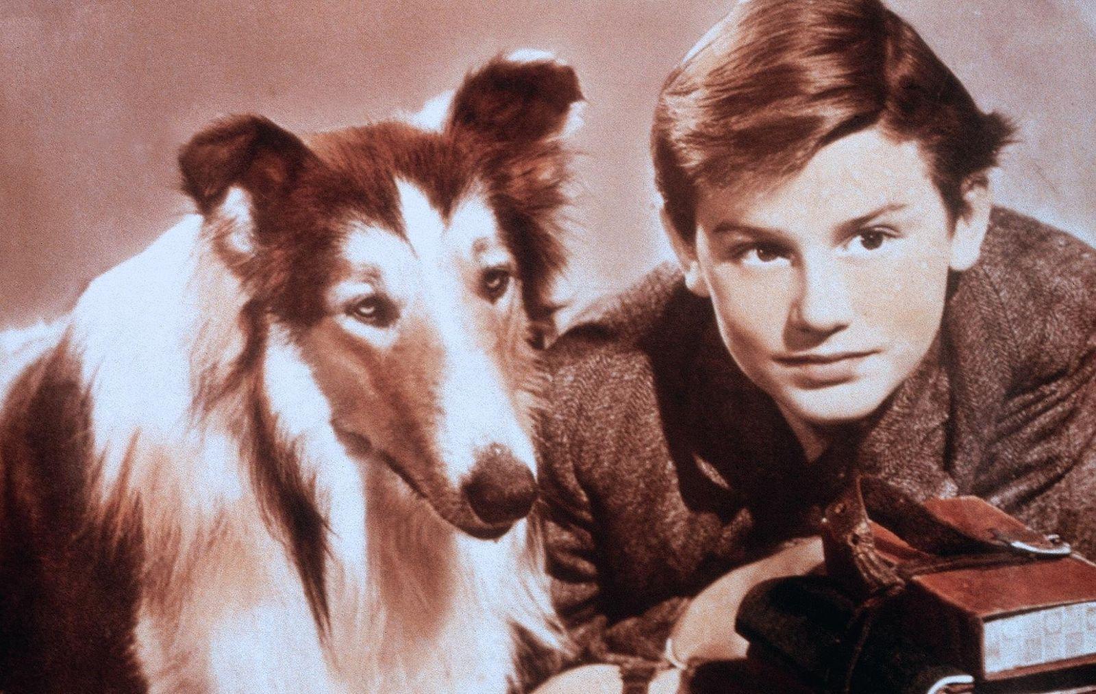 Heimweh / Lassie Come Home