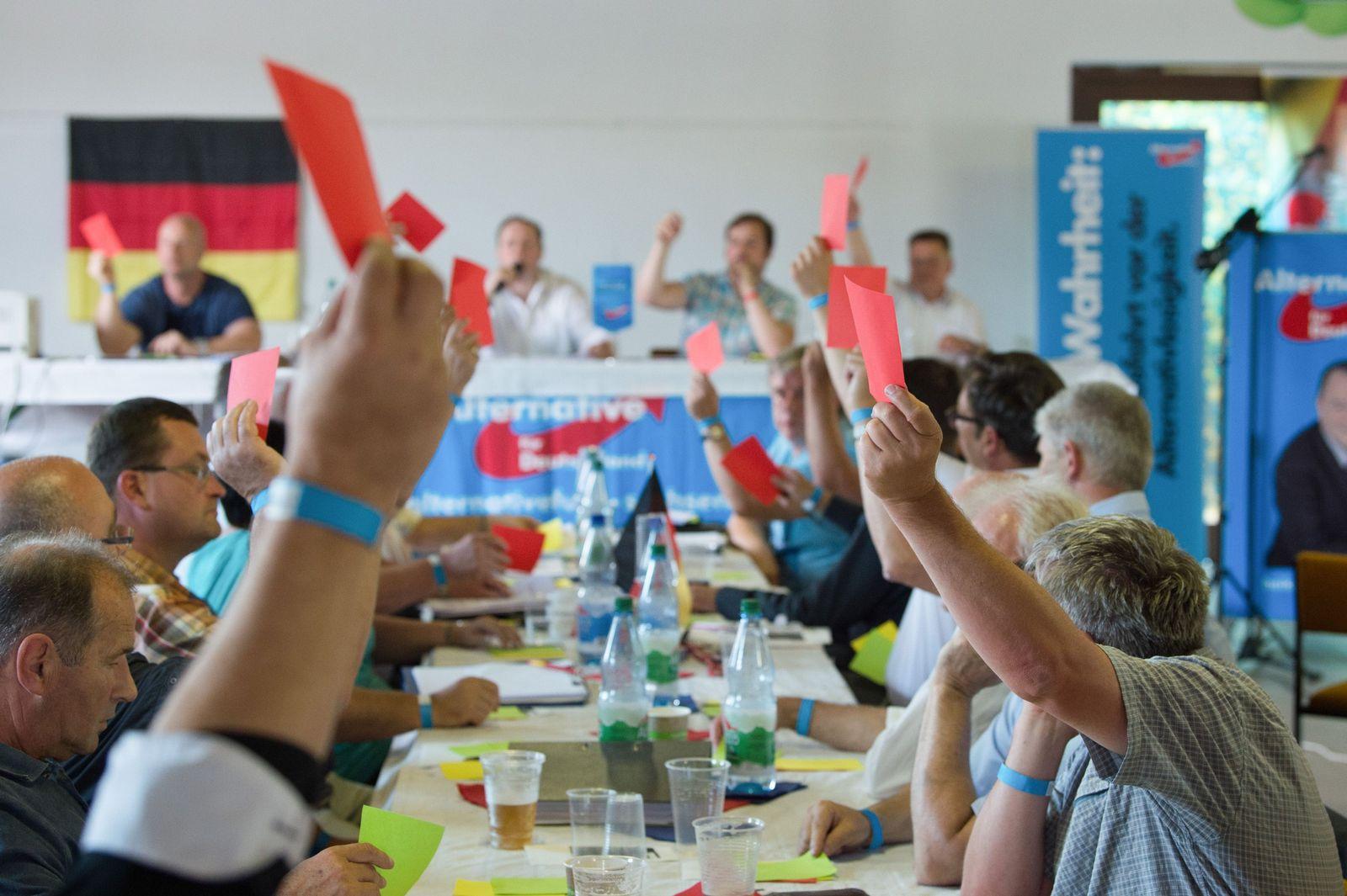 AfD-Kreisparteitag