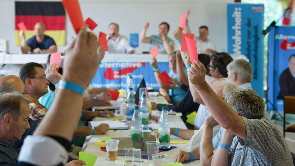 Sächsisches AfD-Treffen