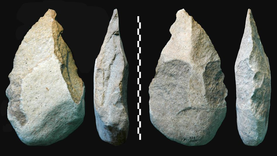 Faustkeil: Homo erectus nutzte bereits vor knapp 1,8 Millionen Jahren Werkzeuge aus Stein