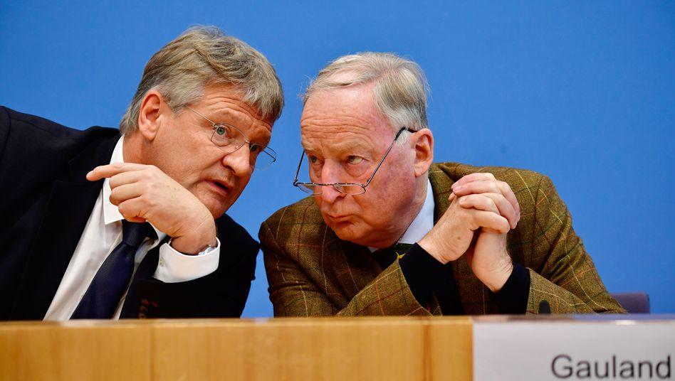 Jörg Meuthen und Alexander Gauland