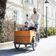Grüne wollen 1000 Euro Zuschuss für Lastenfahrräder