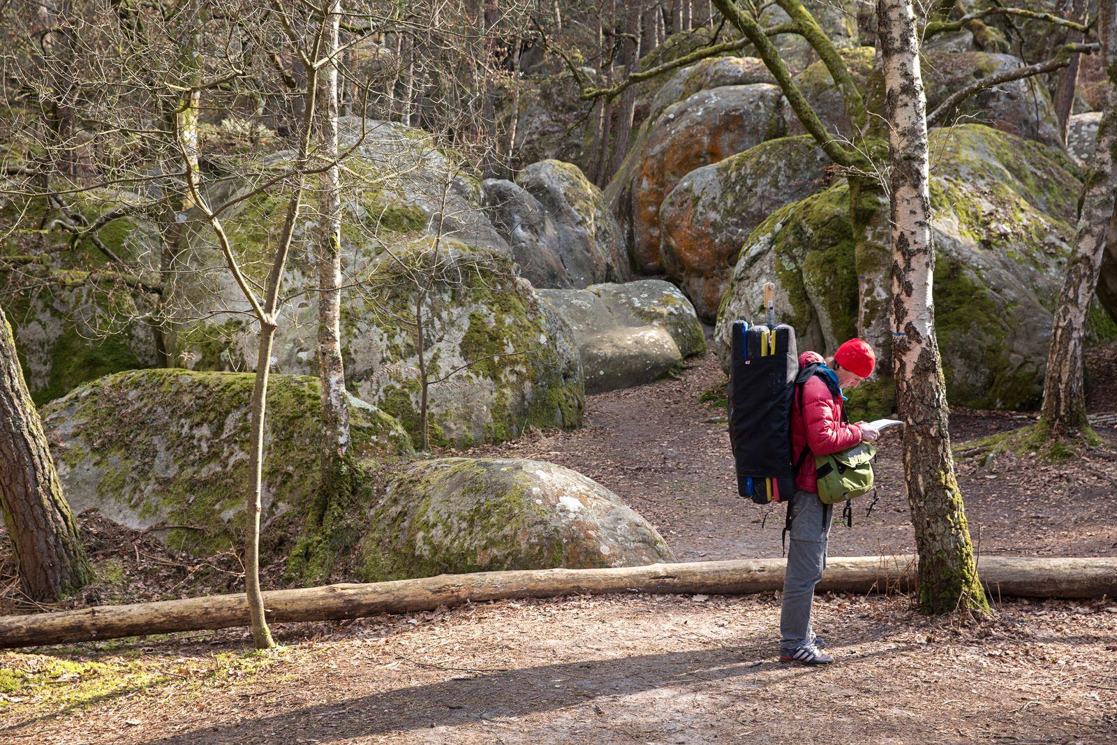 EINMALIGE VERWENDUNG Klettern/ Fontainebleau