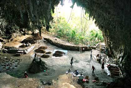 Ausgrabungsstelle auf Flores: Geschrumpfter Homo erectus