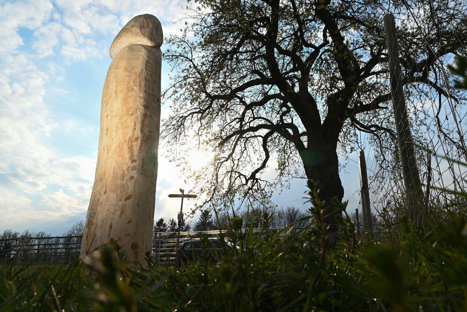 Unbekannte stellen Holz-Penis auf