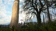 Zwei Meter hoher Holzpenis bei Ravensburg aufgetaucht