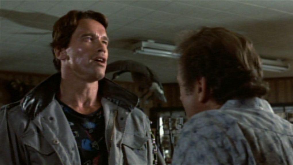 Synchronsprecher Arnold Schwarzenegger