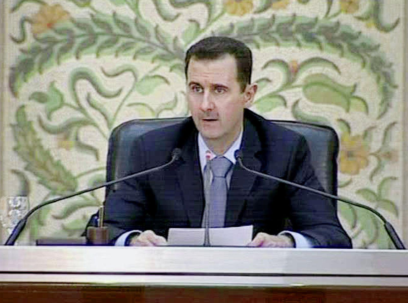 Syrien Proteste / Assad