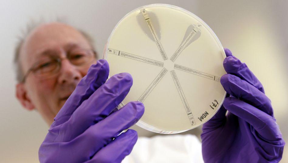 Forscher im Labor: Antibiotika-Resistenzen sind weltweit verbreitet