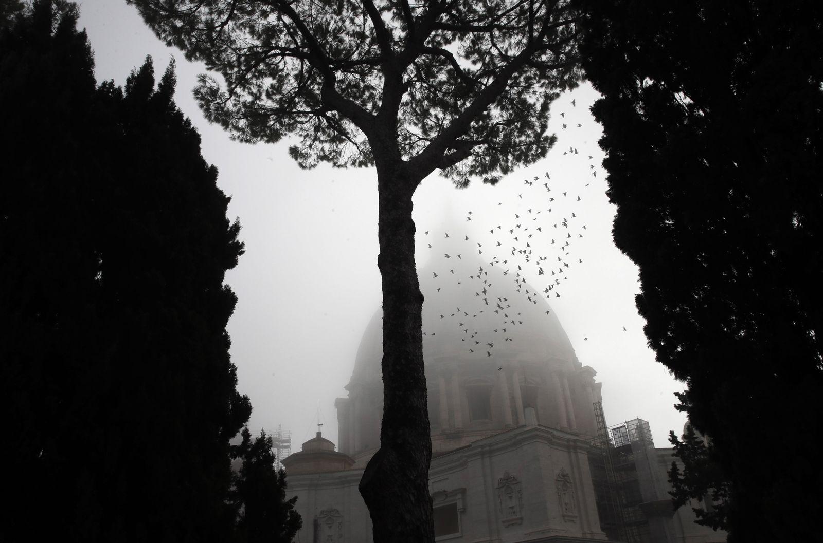 Petersdom im Nebel
