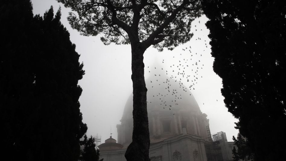 Petersdom im Vatikan (Archiv)