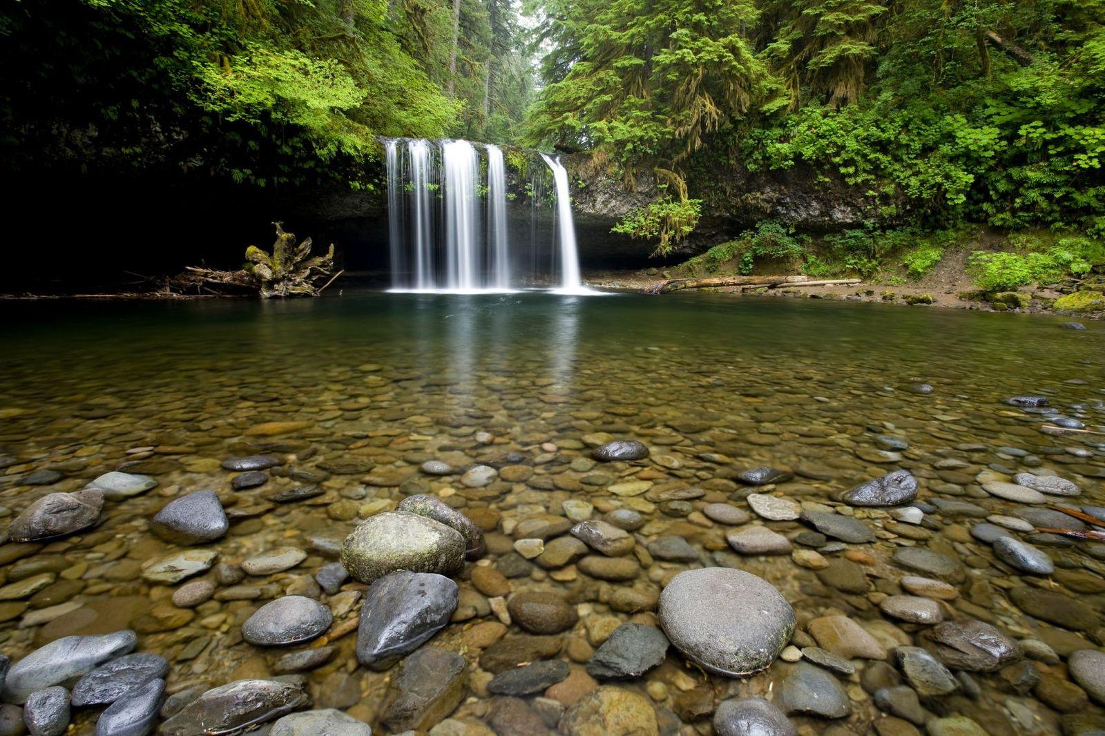 EINMALIGE VERWENDUNG Fließende Gewässer / Artenvielfalt