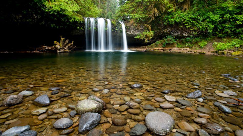 Kleiner Wasserfall: Nitrate gelangen vom Feld über Bäche und Flüsse bis ins Meer