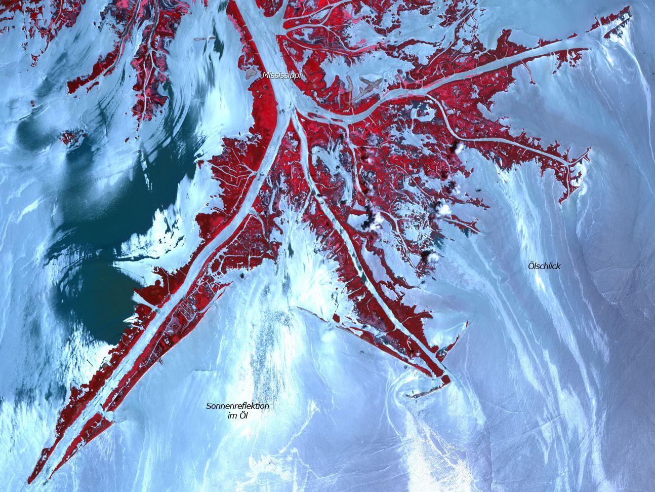 Satellitenbild der Woche / Mississippi Delta